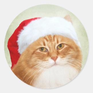 Gato Papá Noel Etiquetas Redondas