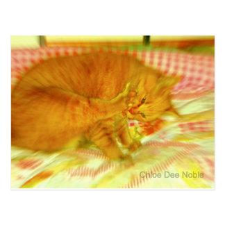Gato pegajoso postal