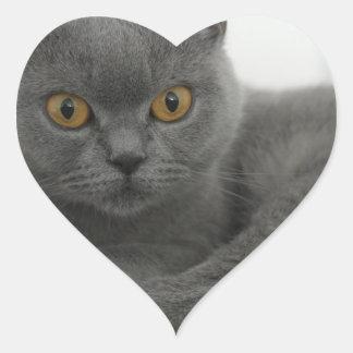 gato pegatina en forma de corazón