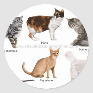 gato pegatina redonda