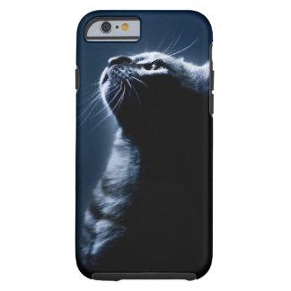 Gato pelado en el claro de luna funda de iPhone 6 tough