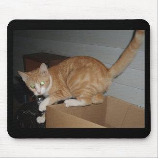 gato perdido alfombrilla de ratones