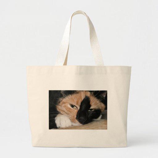 Gato perezoso bolsa