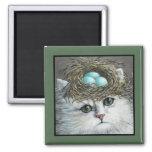 Gato persa blanco con la jerarquía de un petirrojo iman de frigorífico