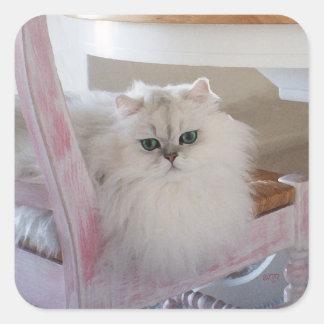 Gato persa blanco en una silla rosada pegatina cuadrada