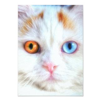 """Gato persa blanco Impar-Observado Invitación 5"""" X 7"""""""