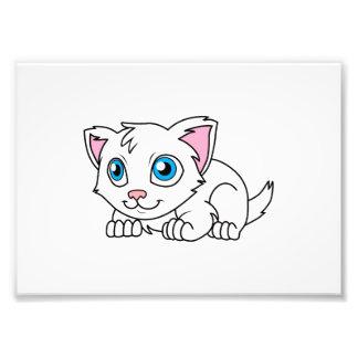 Gato persa blanco lindo feliz con los ojos azules cojinete
