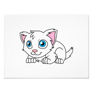 Gato persa blanco lindo feliz con los ojos azules fotografía
