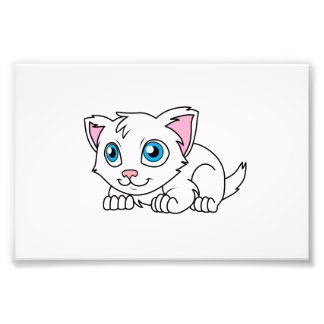 Gato persa blanco lindo feliz con los ojos azules foto