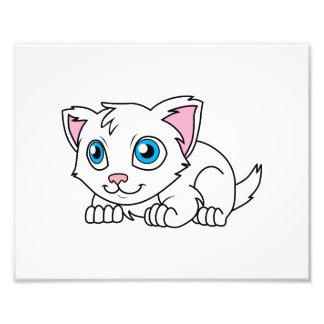Gato persa blanco lindo feliz con los ojos azules impresiones fotograficas