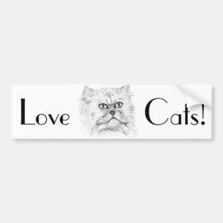 Gato persa bosquejado Digital con los ojos grandes Pegatina De Parachoque