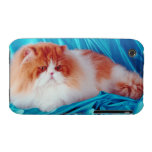 Gato persa Case-Mate iPhone 3 funda