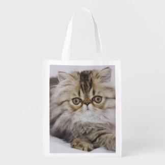 Gato persa, catus del Felis, Tabby de Brown, Bolsa Reutilizable