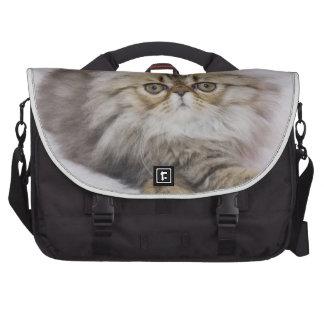 Gato persa, catus del Felis, Tabby de Brown, gatit Bolsas Para Portatil