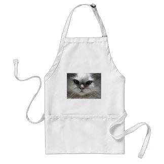 Gato persa de la chinchilla delantal