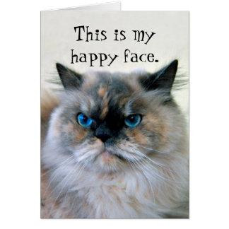 Gato persa Himalayan del humor del feliz