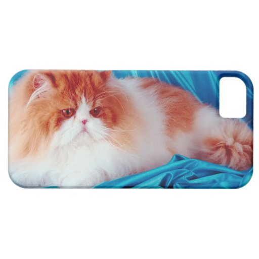 Gato persa iPhone 5 funda
