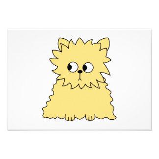 Gato persa lindo Amarillo Comunicados