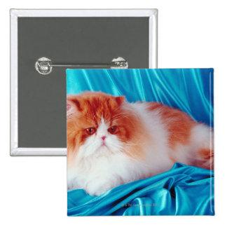 Gato persa pin cuadrada 5 cm