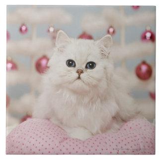 Gato persa que se sienta en la almohada rosada azulejo cerámica