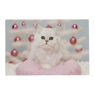 Gato persa que se sienta en la almohada rosada salvamanteles