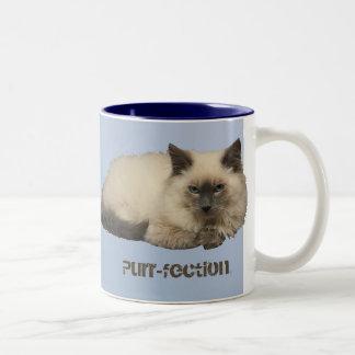 Gato persa taza de café