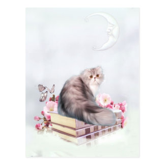 Gato persa y libros tarjeta postal