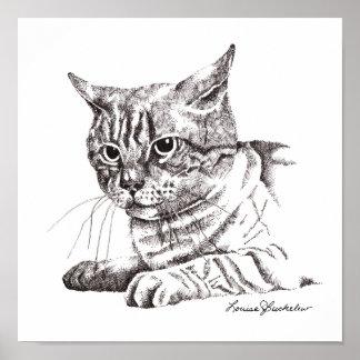 Gato, perturbado impresiones