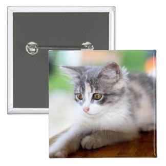 gato chapa cuadrada 5 cm