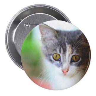 gato chapa redonda 7 cm