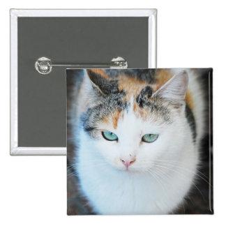 Gato Pin Cuadrada 5 Cm