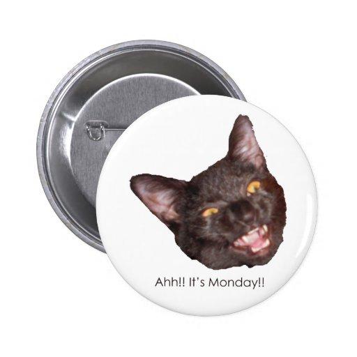 Gato Pins