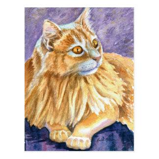 Gato poner crema del angora tarjetas postales