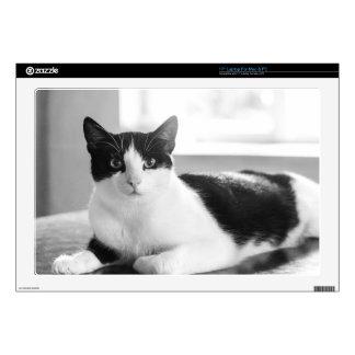 gato portátil 43,2cm skins