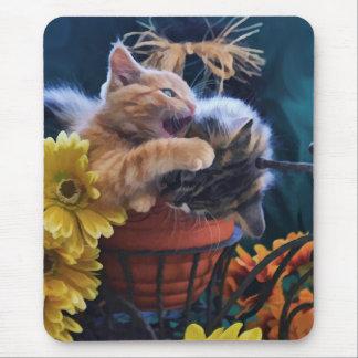 Gato psico, gato del gatito que muerde un gato del tapetes de raton