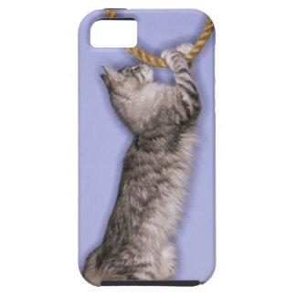 Gato que alcanza para la cuerda funda para iPhone 5 tough