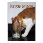 Gato que bebe de la tarjeta de cristal del feliz c