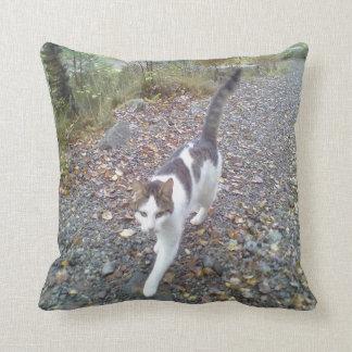 Gato que camina almohadas