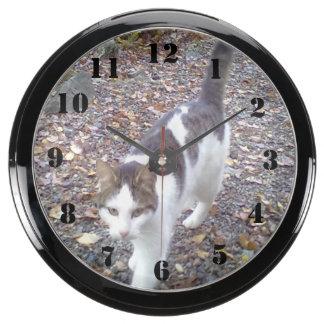 Gato que camina reloj aquavista
