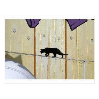 gato que camina de la cuerda tirante postales