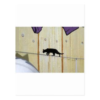 gato que camina de la cuerda tirante tarjeta postal