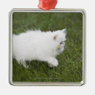 Gato que camina en césped adorno navideño cuadrado de metal