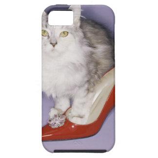 Gato que camina en el tacón alto iPhone 5 funda