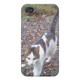 Gato que camina iPhone 4/4S funda