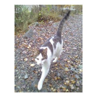 Gato que camina membrete