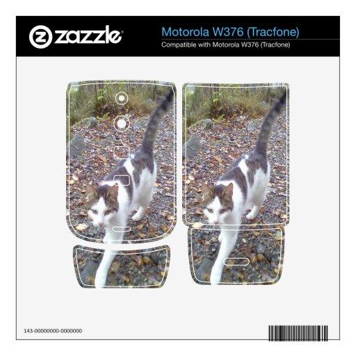 Gato que camina motorola w376 calcomanía
