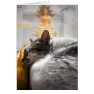 Gato que duerme debajo del reloj de Buda Tarjeta De Felicitación