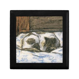 Gato que duerme en una cama de Claude Monet Caja De Regalo