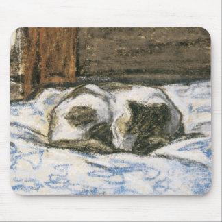 Gato que duerme en una cama de Claude Monet Mousepads