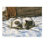 Gato que duerme en una cama de Claude Monet Tarjeta Postal